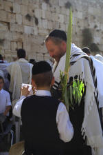 Father and Son Celebrating Sukot at Kotel - GPO Pictures - Photo by Amos ben Gershon